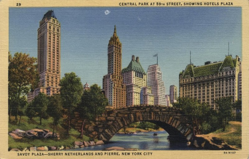 walk-in-new-york-postcard-vintage-central-park-n2